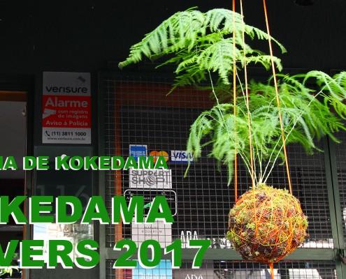 OFICINA DE KOKEDAMA 1500